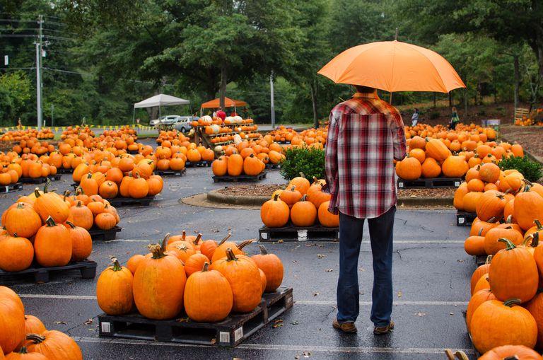 Man under orange umbrella