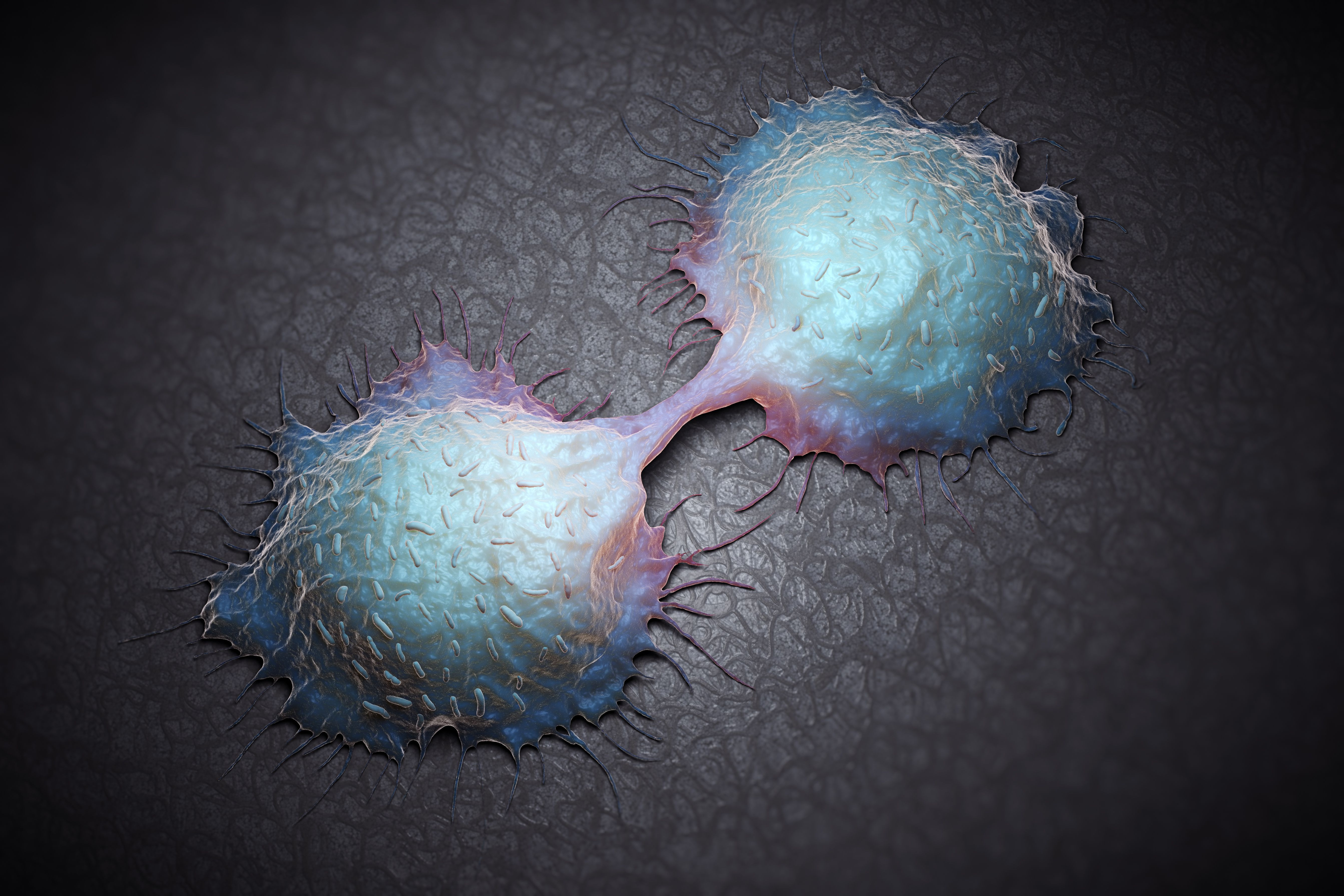 Understanding The Warning Signs Of Colorectal Cancer