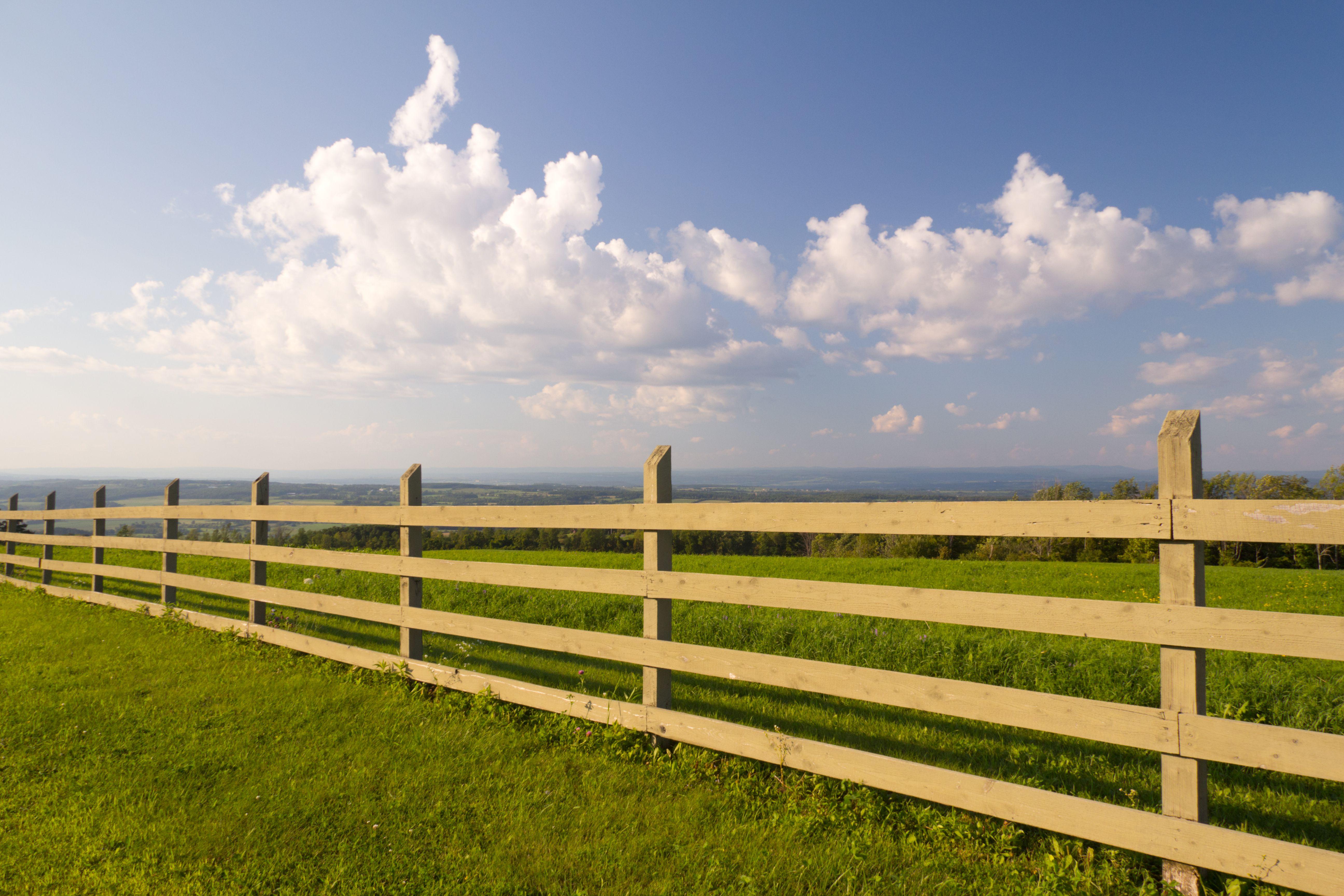 fences driveways walkways