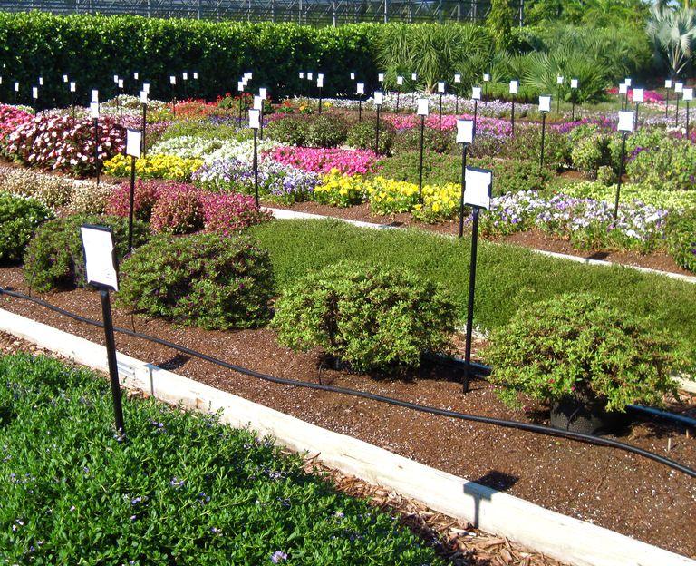 Aprende c mo mejorar el terreno de tu patio o jard n - Un jardin para mi ...
