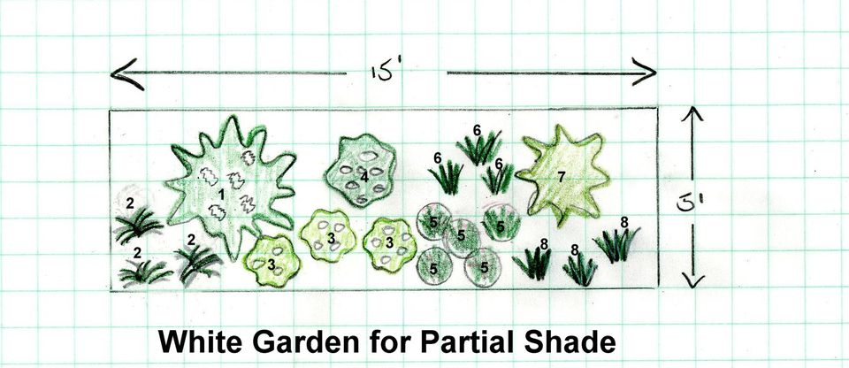 Garden Design Plan for a White Themed Shade Garden