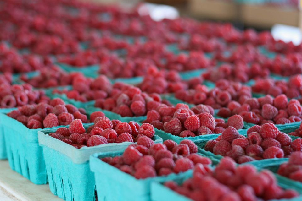 Cardboard aqua pints of raspberries on display at the farmer's market.