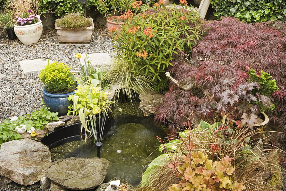 How to build small water features for Backyard pond maintenance
