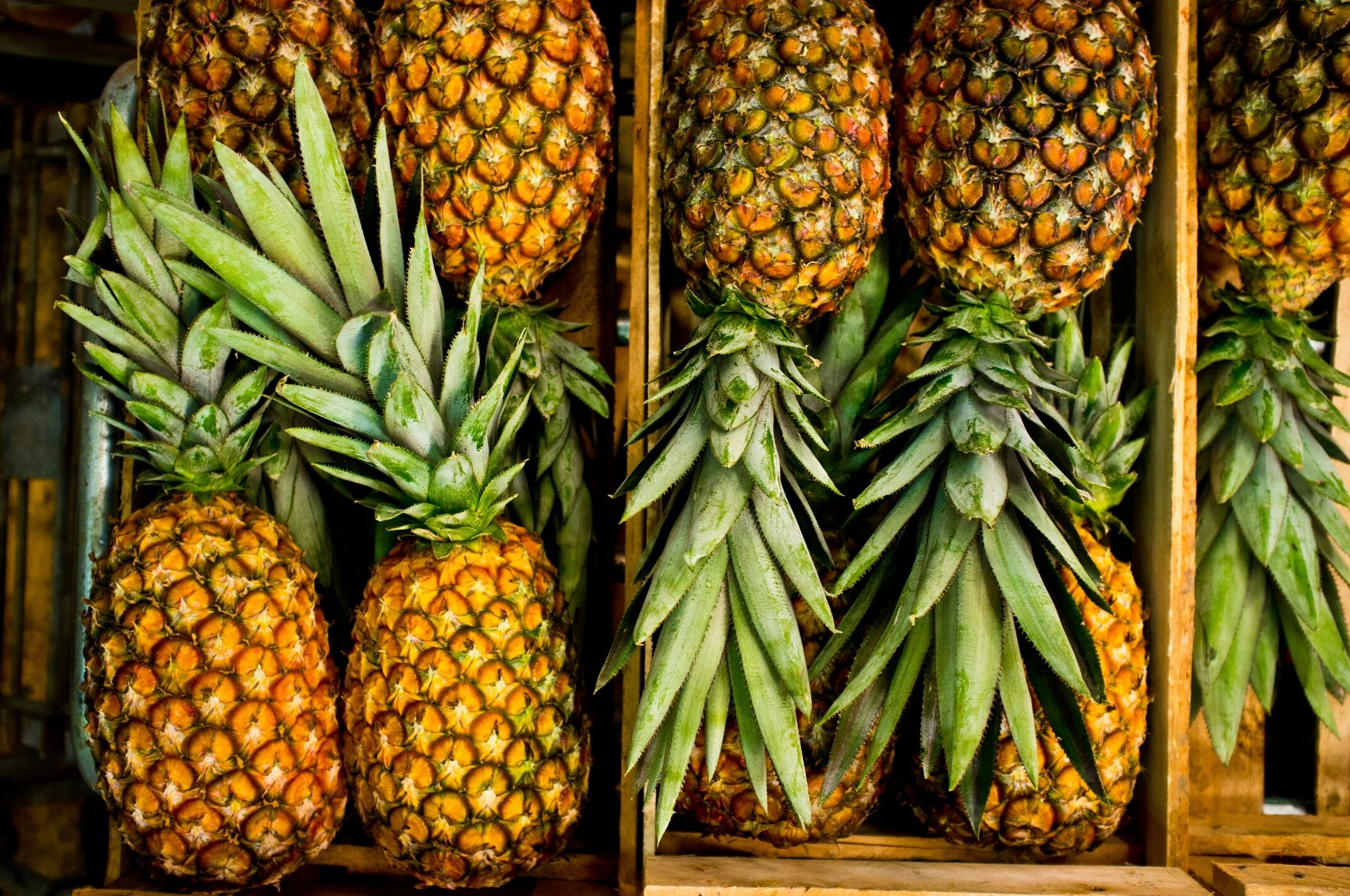 high angle view of pineapples in crate 587191515 59543d903df78cdc298933cc