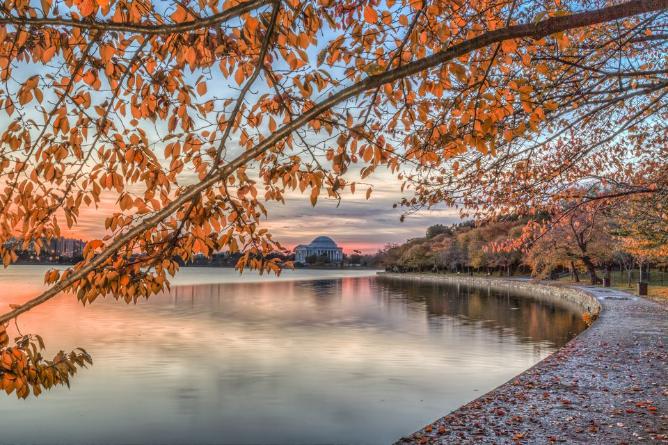 Fall Foliage in Washington DC Maryland and Virginia