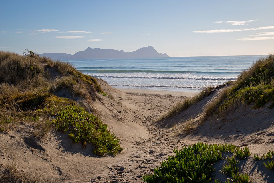 7 things to do in New Zealands Northland | Lonely planet