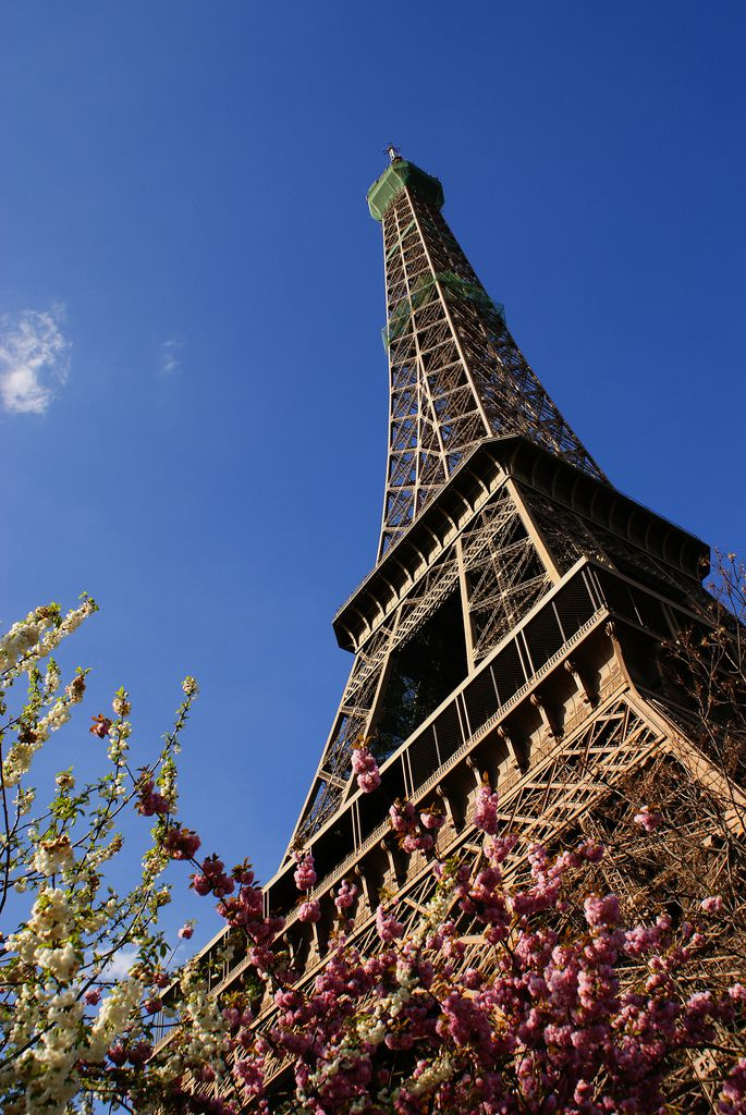 Spring blossoms at the foot of the Eiffel Tower in Paris, France.