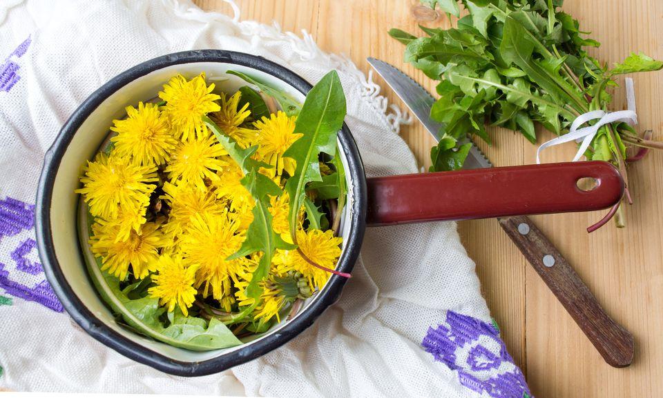dandelions in bowl in kitchen