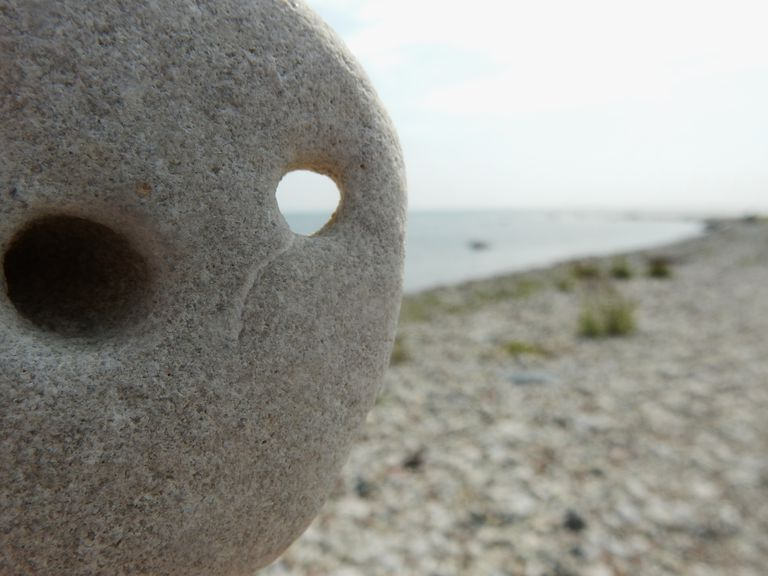 Close-Up Of Stone At Beach On Sunny Day