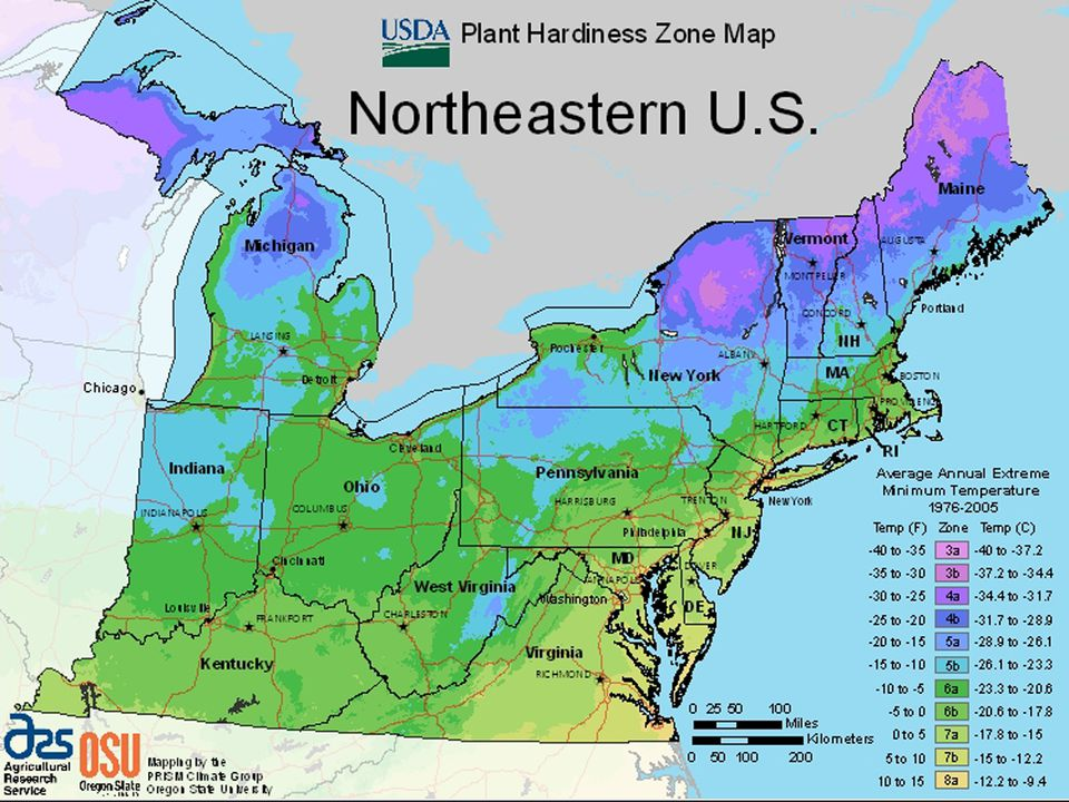 Maps For Growing Zones From The USDA How Cold It Gets - Northeastern usa map