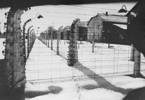 View of Auschwitz's barbed wire fence.