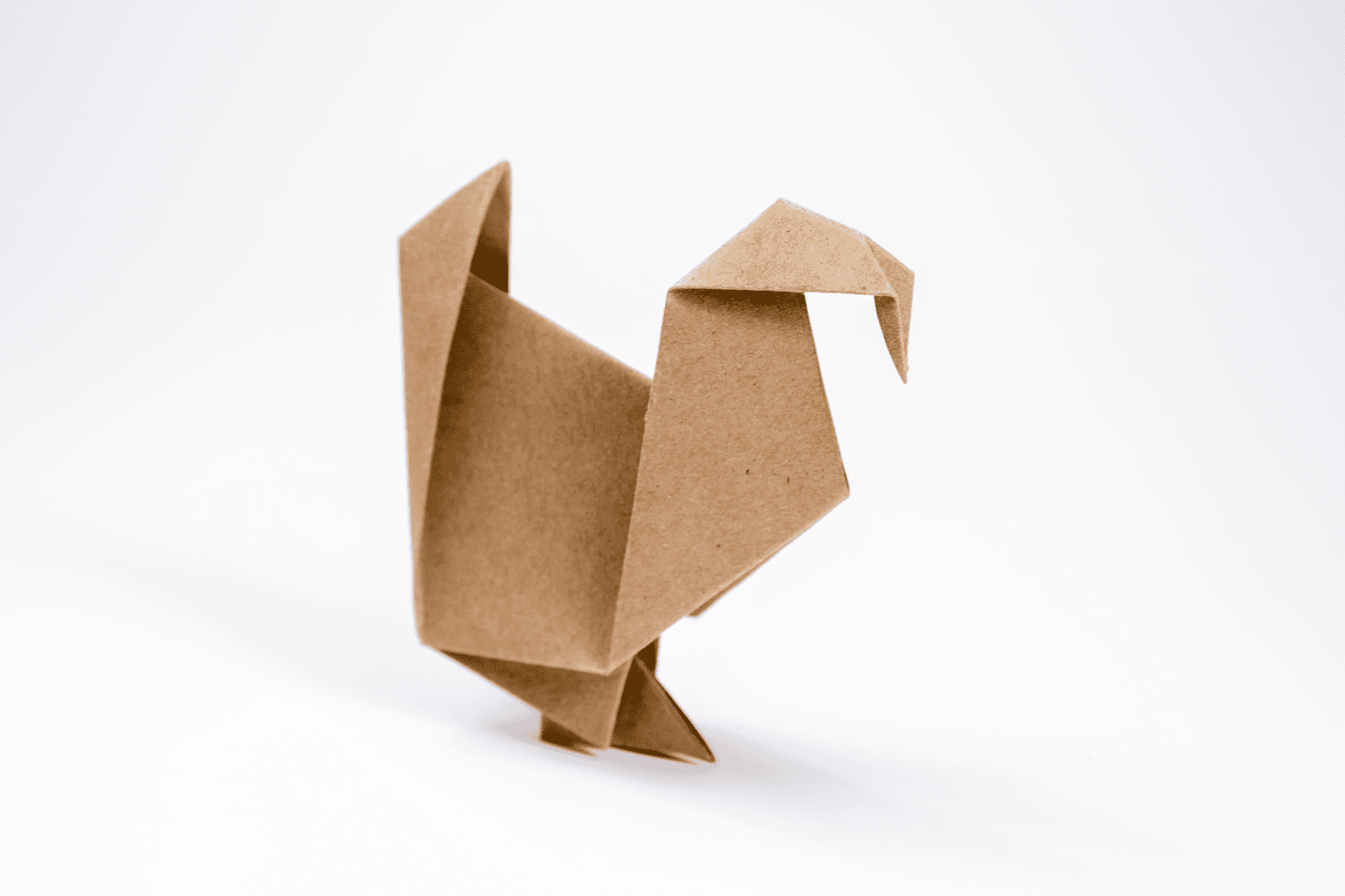 How to Make an Origami Turkey - photo#2