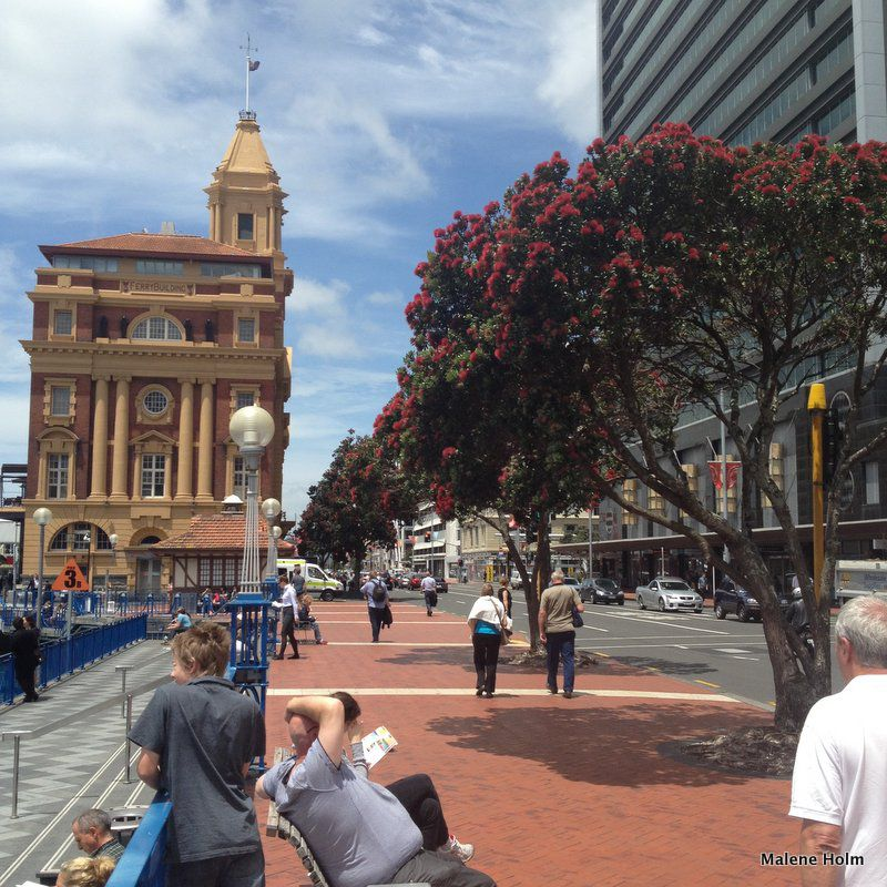Auckland Ferry Building, Auckland City