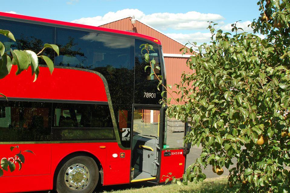 Fall Bus Tours