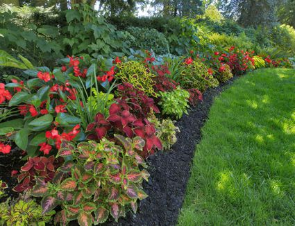 Landscape Plan for Wet Areas on Landscaping Ideas For Wet Backyard id=45603