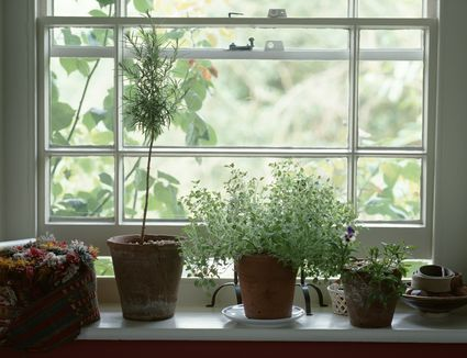 Top 7 Window Ideas For A Ranch Style House