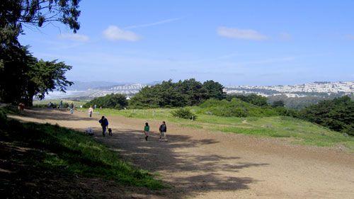 Fort Funston Dog Park