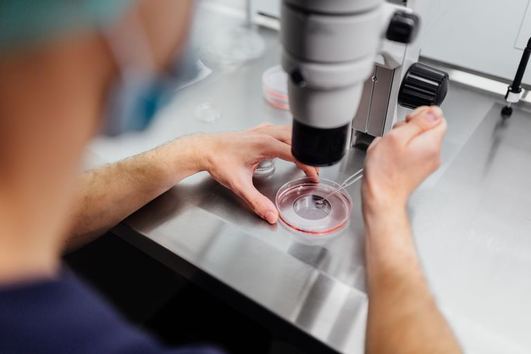 medical research in lab
