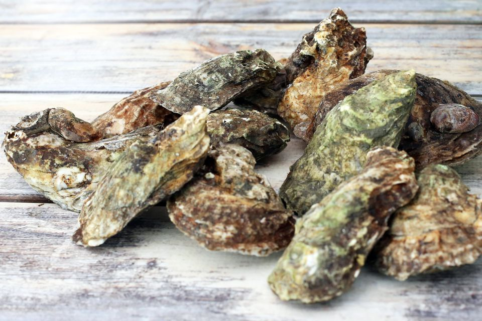 Unscrubbed Oysters