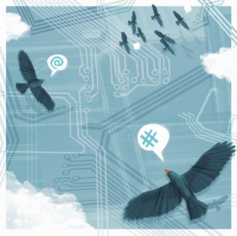 Image of birds tweeting.