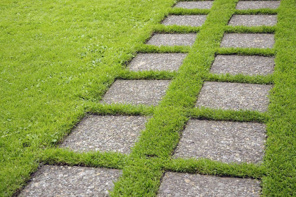 Stepping stone path across lawn, Mien Ruys Garden, Holland, September. Part of a series, image 15 of 47