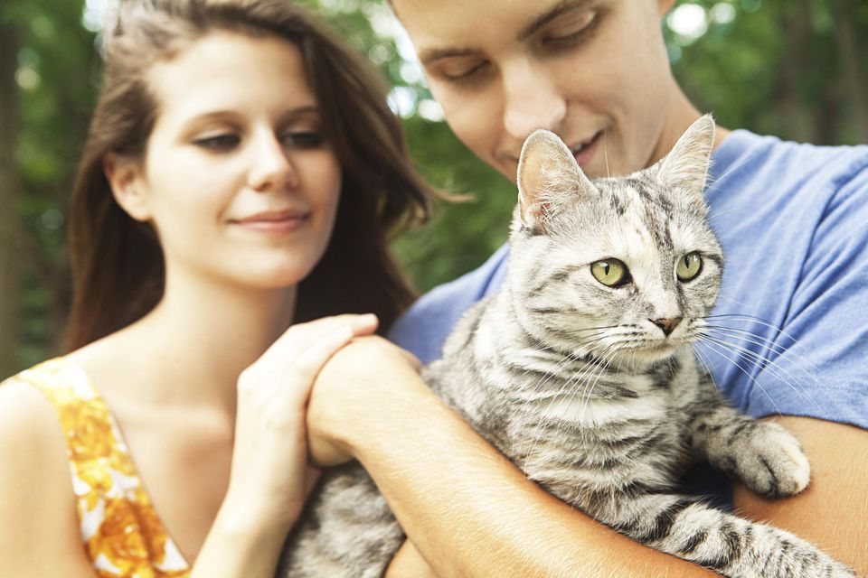 Couple holding cat
