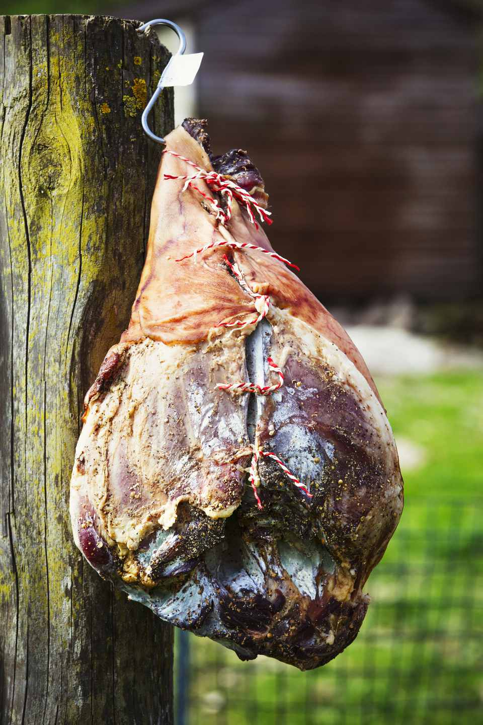 Close up of a cured ham hanging on a wooden fence.