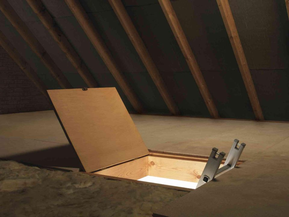 Empty attic with open door and ladder