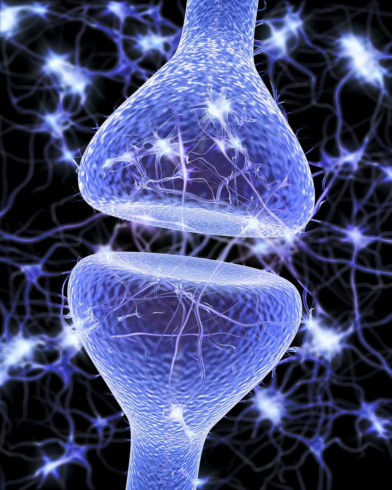Nerve synapse, artwork