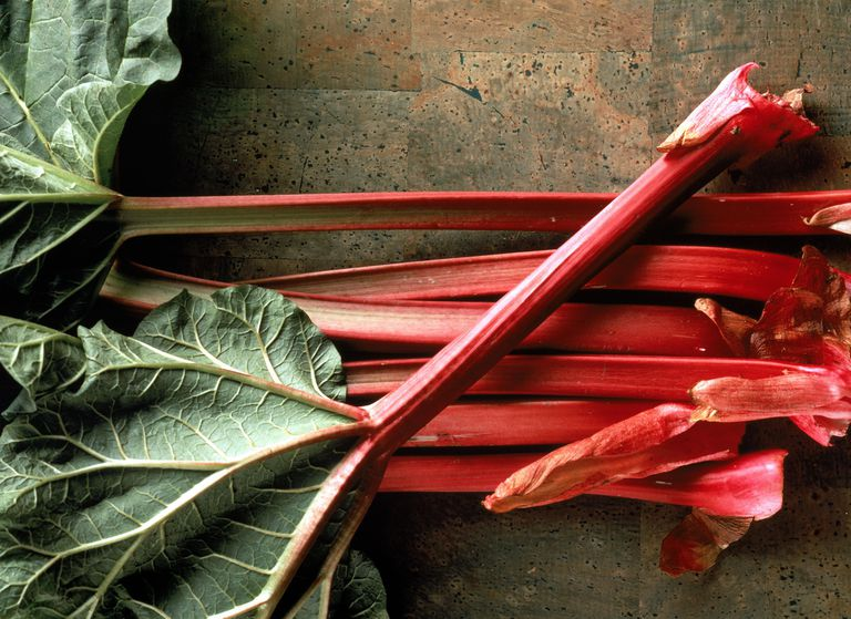 Stalks of fresh rhubarb
