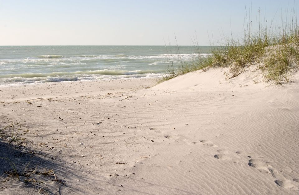 Sand Dunes on Gulf of Mexico, Caspersen Beach, Venice, Florida
