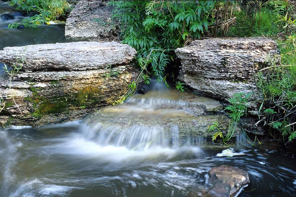 Stream in Jemez Mountains