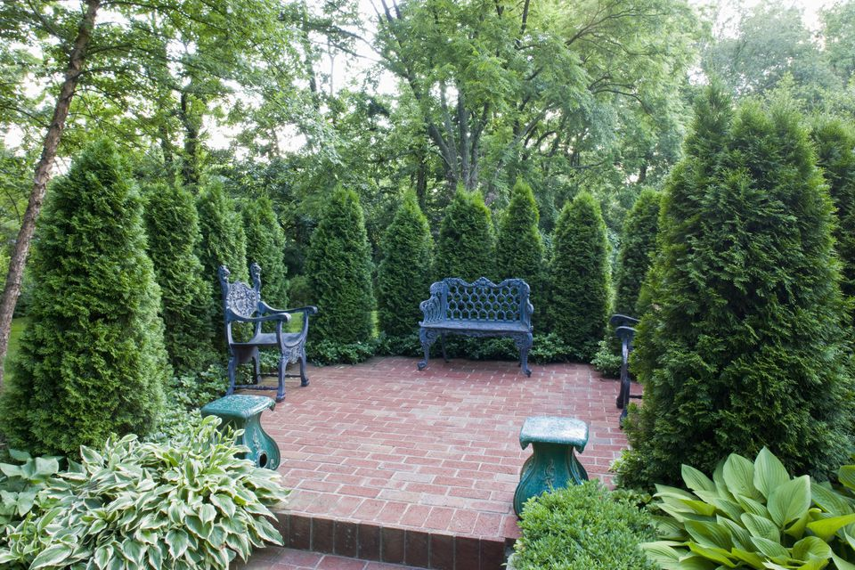 Ideas for landscaping property lines for Garden windbreak designs