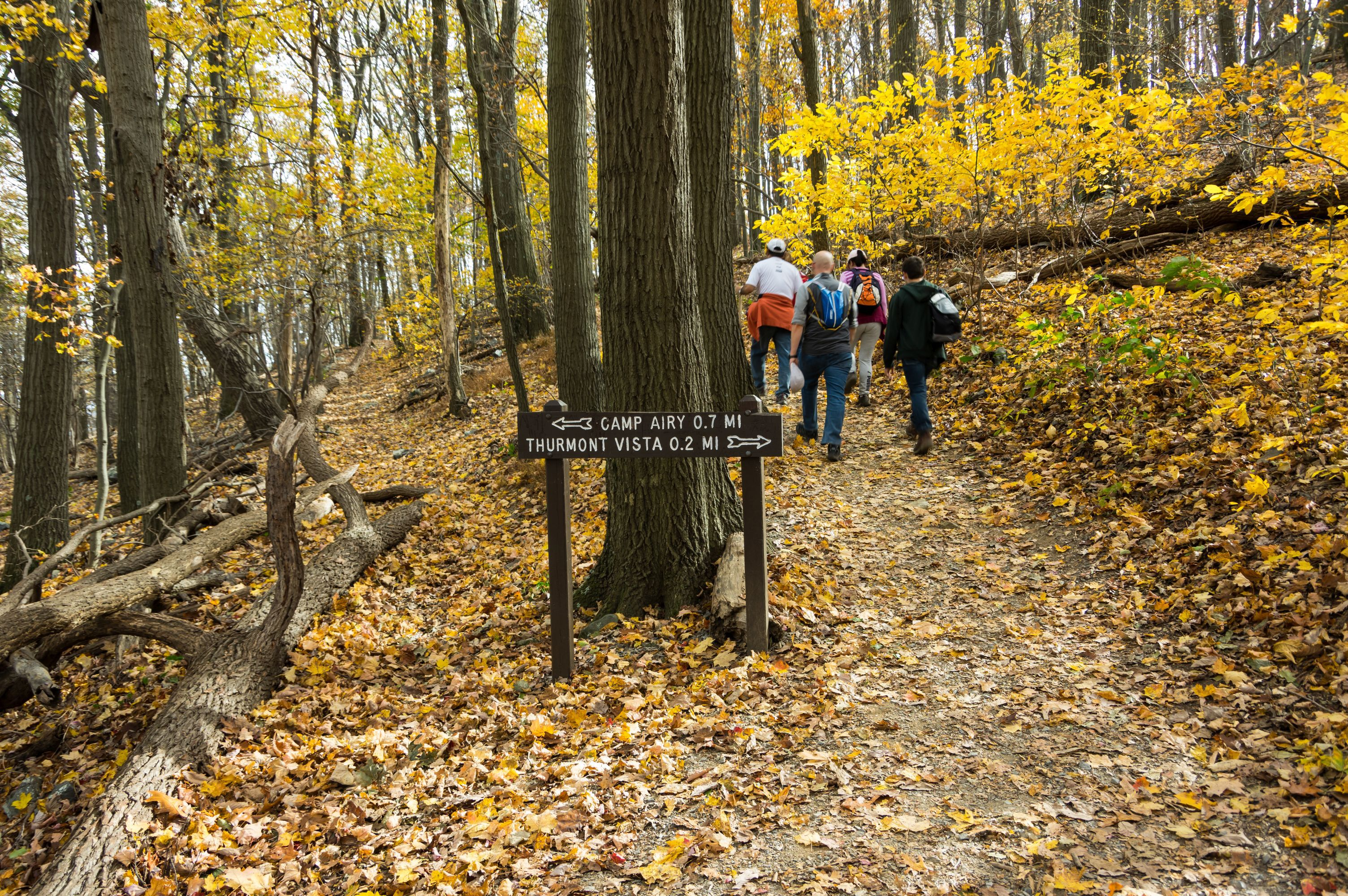 Best Hiking Trails In The Washington D C Area
