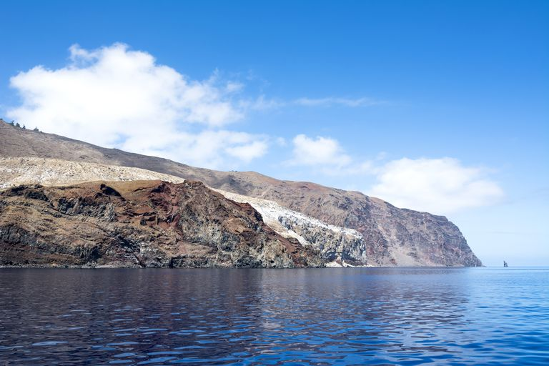 Guadalupe Island Fishing