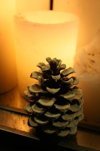 Christmas Party Decoration, Christmas party decoration ideas, pinecone crafts, pinecones