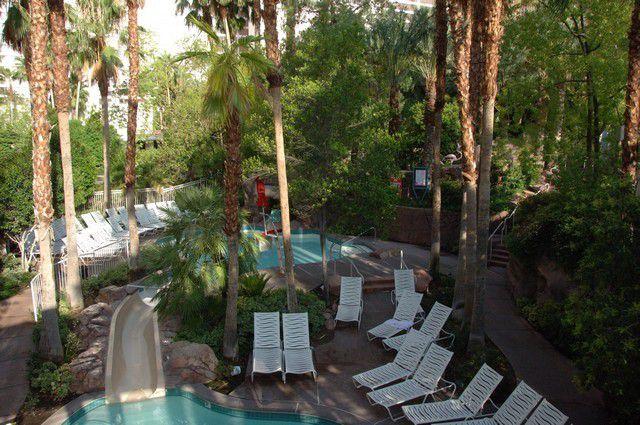 Flamingo Pool and Slide