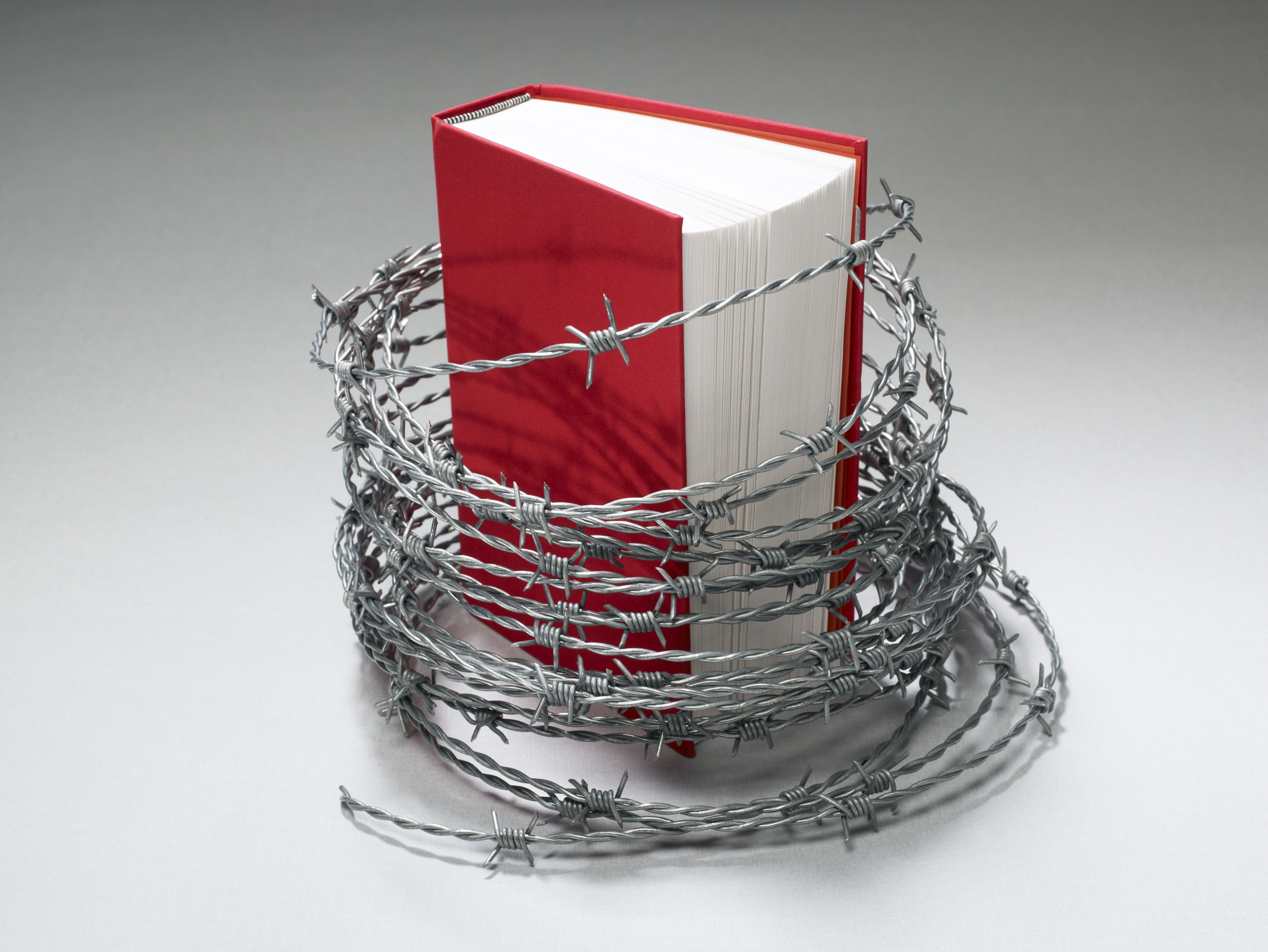 book banning The flow of information through our modern digital world has led to many new  issues and controversies book banning and other forms of.