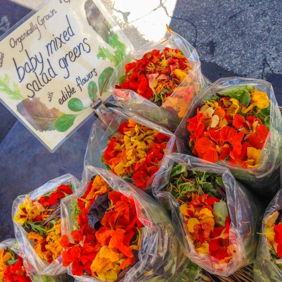 Farmers Markets in San Jose and Silicon Valley