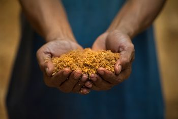 how to make soft bread crumbs