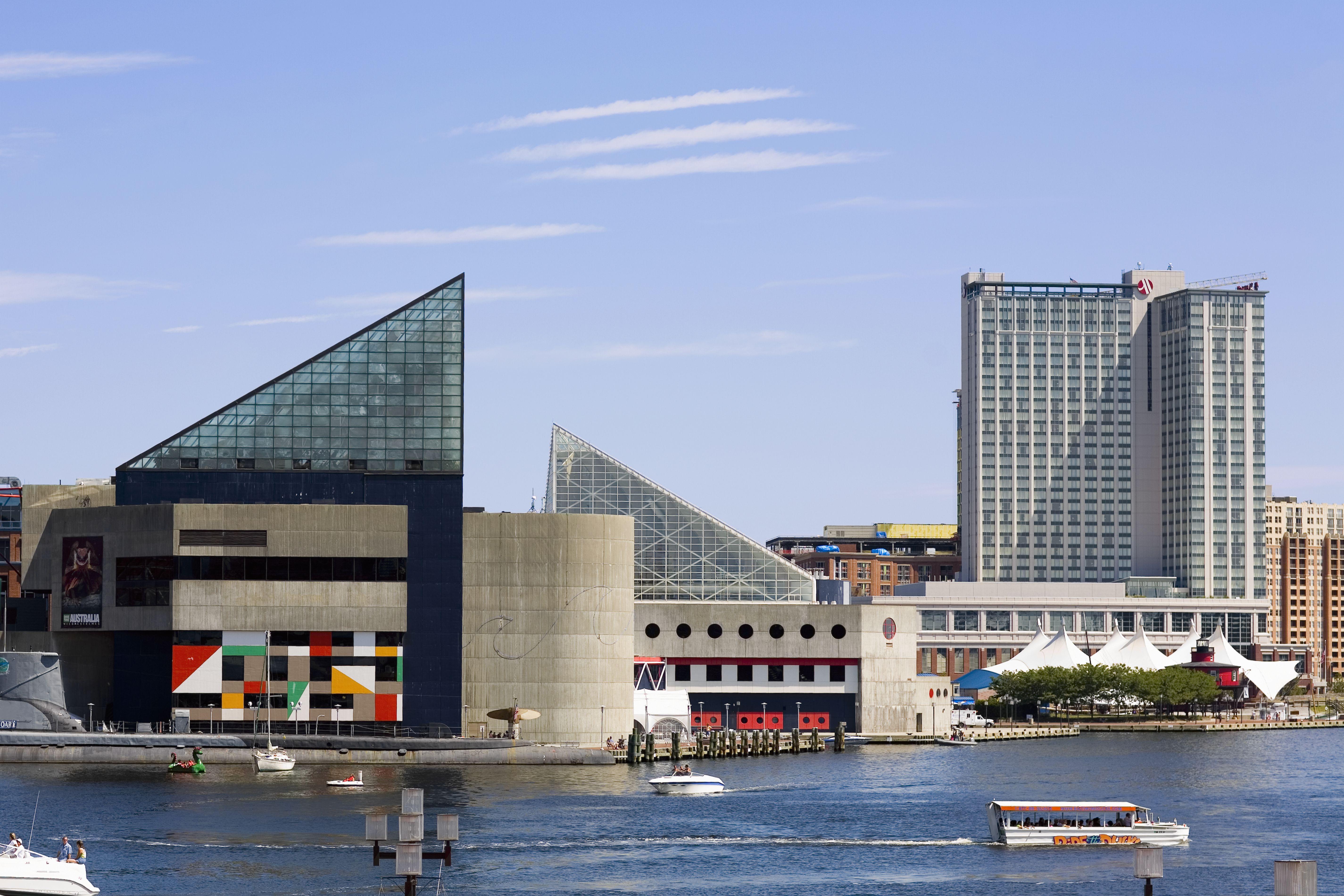 The Baltimore Aquarium Dolphin Show