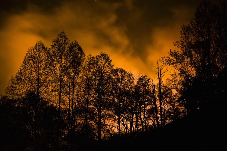 The World's Worst Wildfires