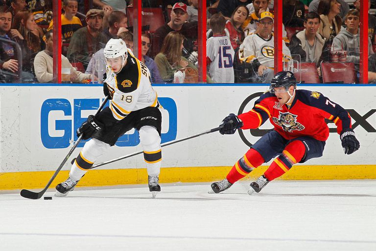 Dmitry Kulikov #7 of the Florida Panthers defends against Reilly Smith #18 of the Boston Bruins during a first period power play at the BB&T Center on March 9, 2014 in Sunrise, Florida.