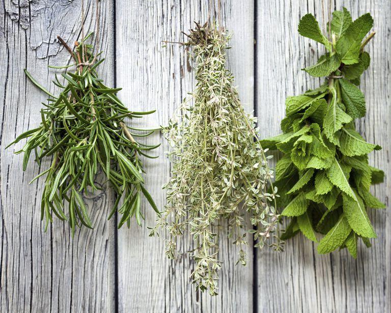 HerbsDrying_1500.jpg
