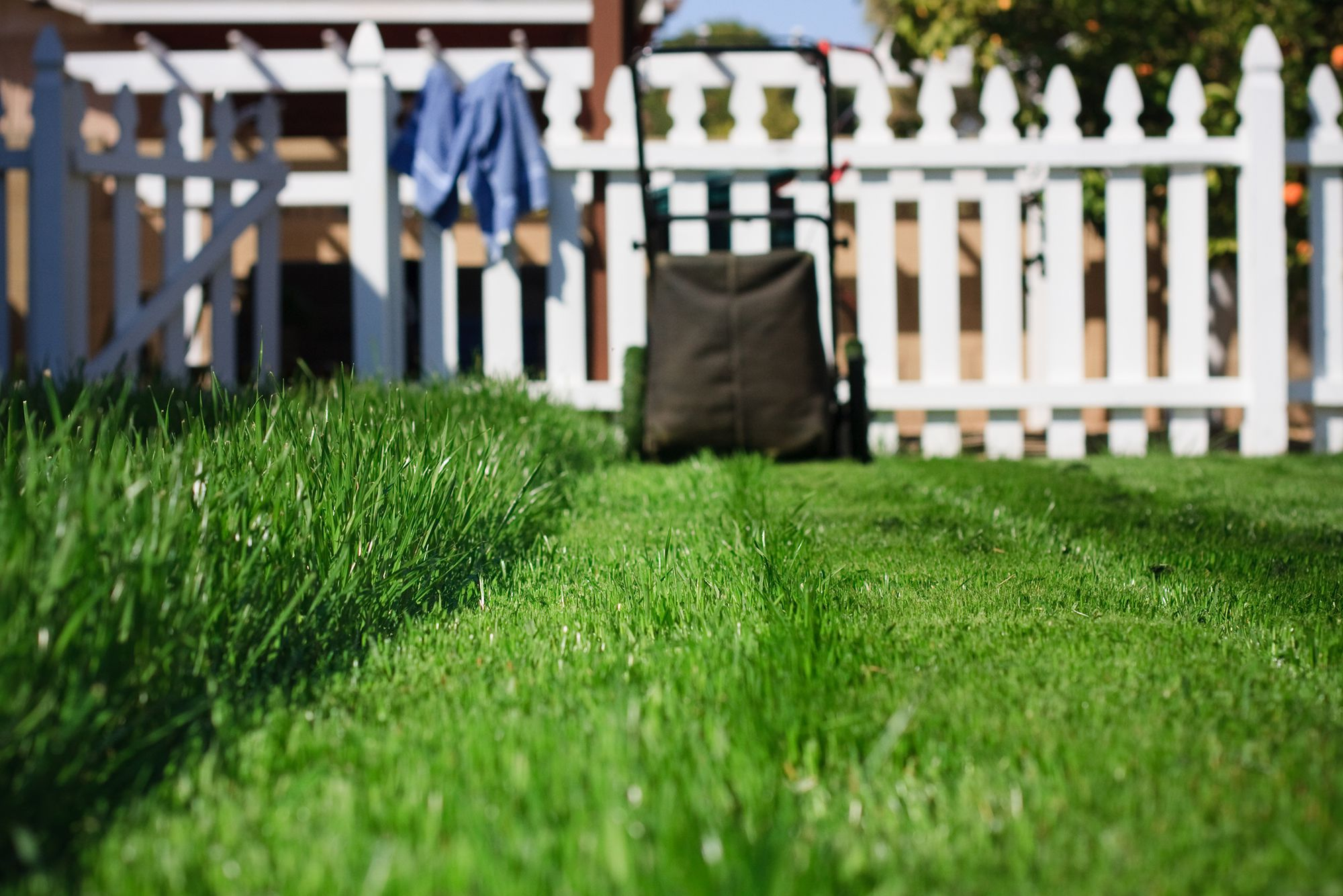 spring yard cleanup checklist for lawns landscaping