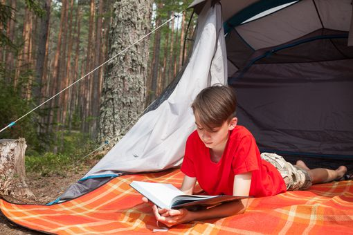 Boy reading a book in a summer forest