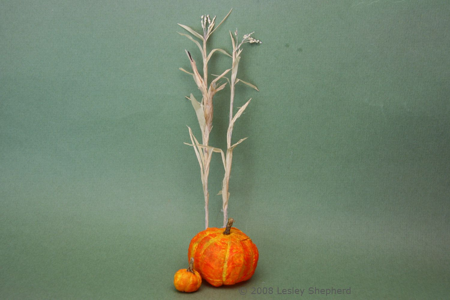 Step By Step Guide To Make Scale Miniature Corn Stalks