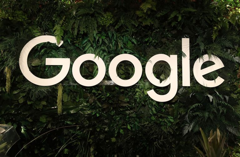 Google sign against greenery.