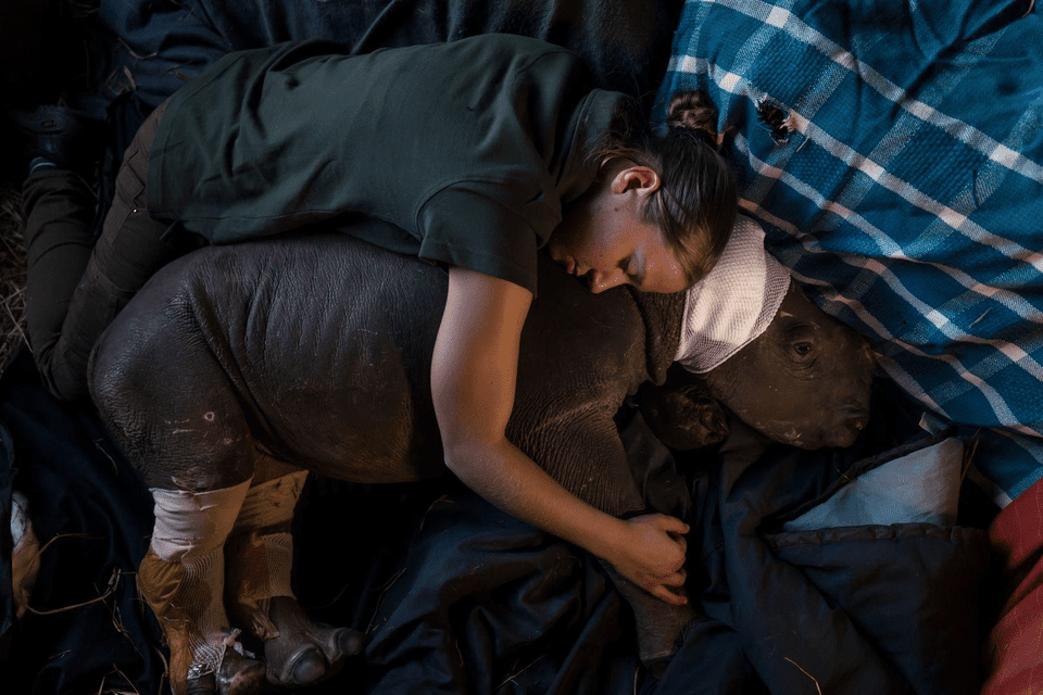 Montreal World Press Photo 2017 dates are August 30 to October 1.