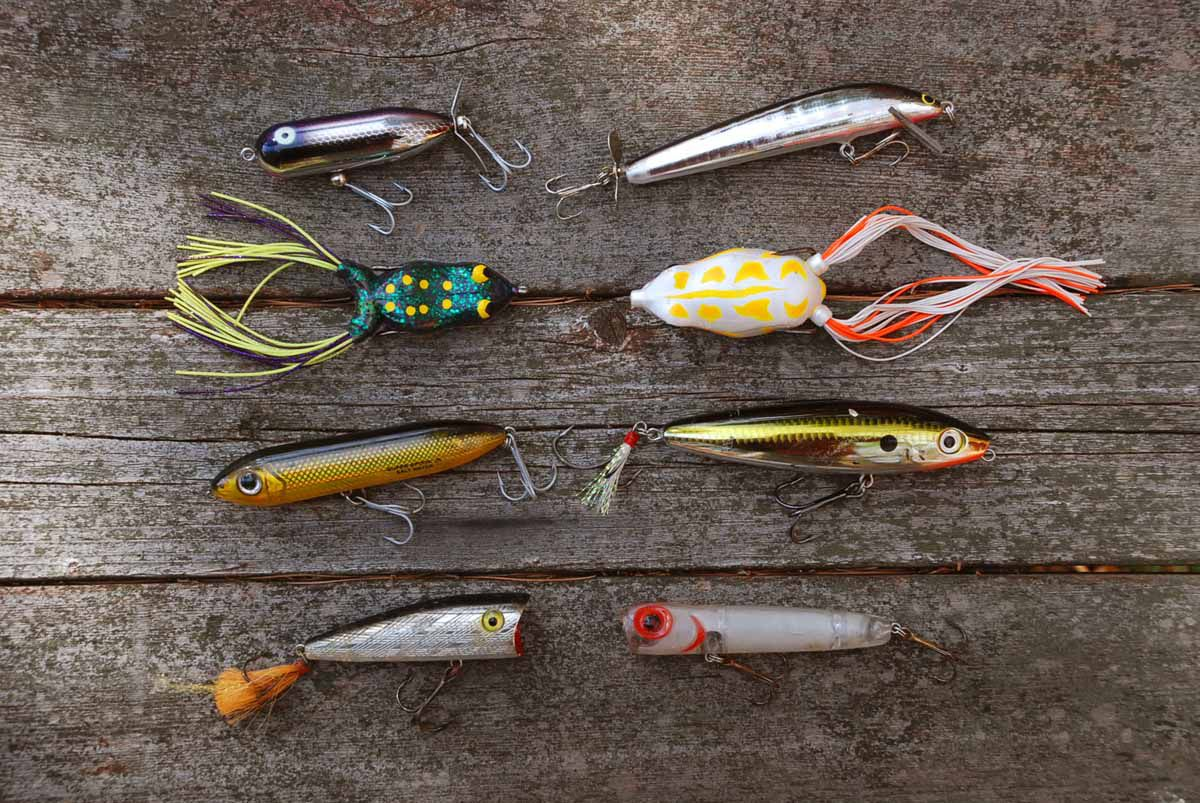 When to Use Topwater Lures for Bass